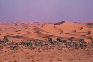 Grand_Erg-algerien