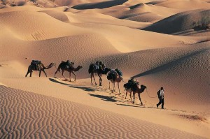 randonnée chameliers Algérie