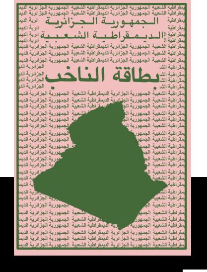 Carte Consulaire Algerie Lille.Revision Annuelle Des Listes Electorales Consulat General